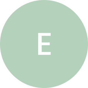 Elektro-bud