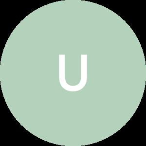 UbiBUD
