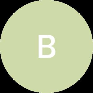 BB Wodnicki