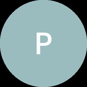 Polbud