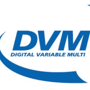 www.dvmsystem.pl