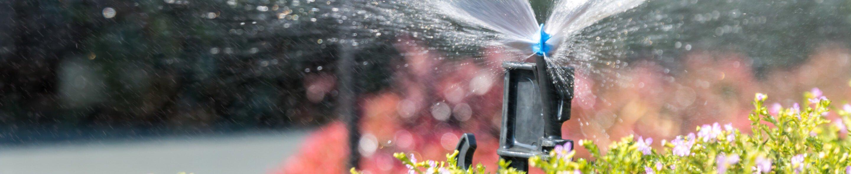 Nawadnianie ogrodu i trawnika Wąbrzeźno