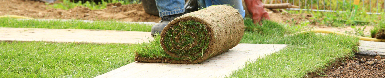 Zakładanie trawnika Łomża